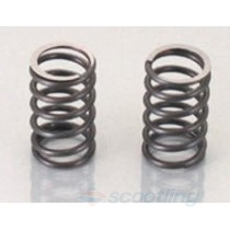 Kitaco performance valve springs